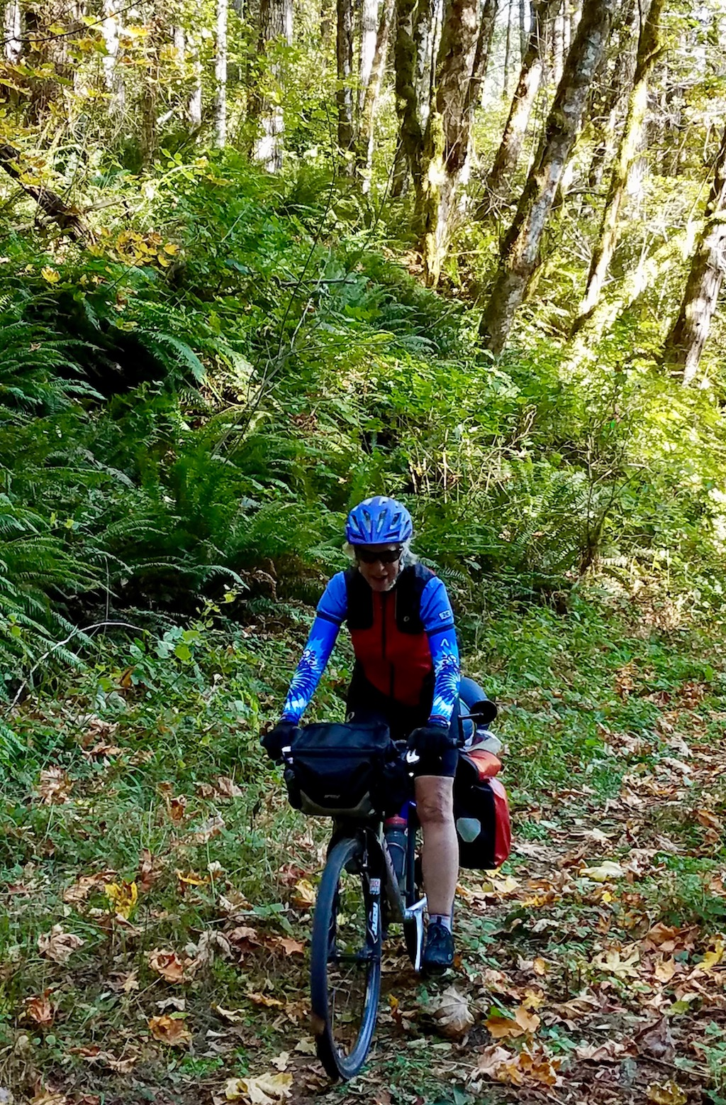 Eileen on the C2C trail