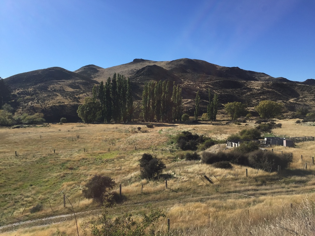 Typical Otago scenery